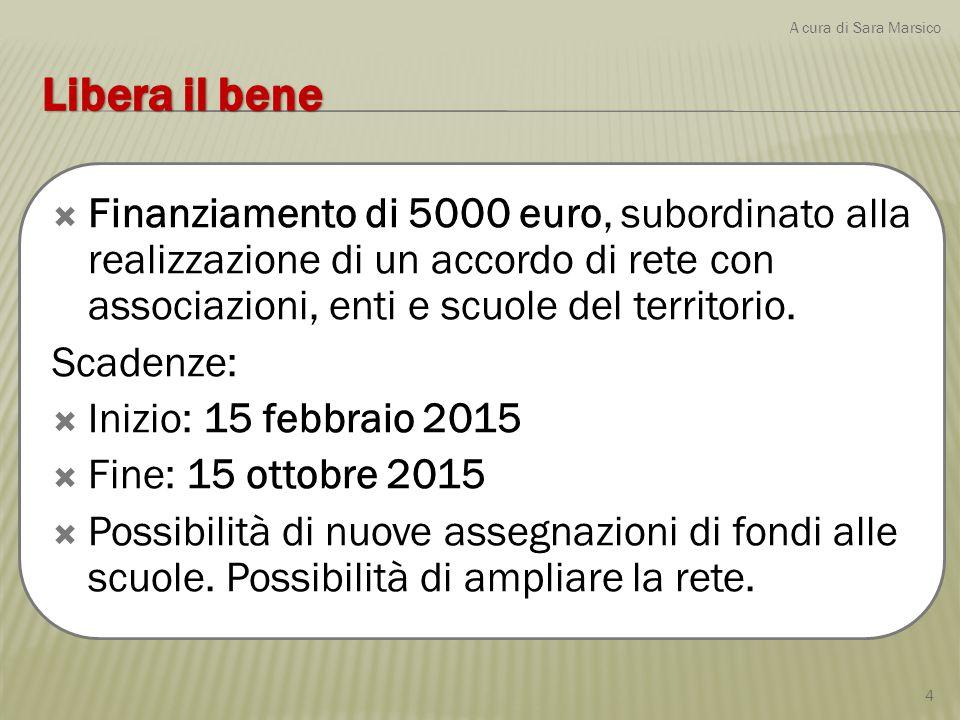  Finanziamento di 5000 euro, subordinato alla realizzazione di un accordo di rete con associazioni, enti e scuole del territorio. Scadenze:  Inizio: