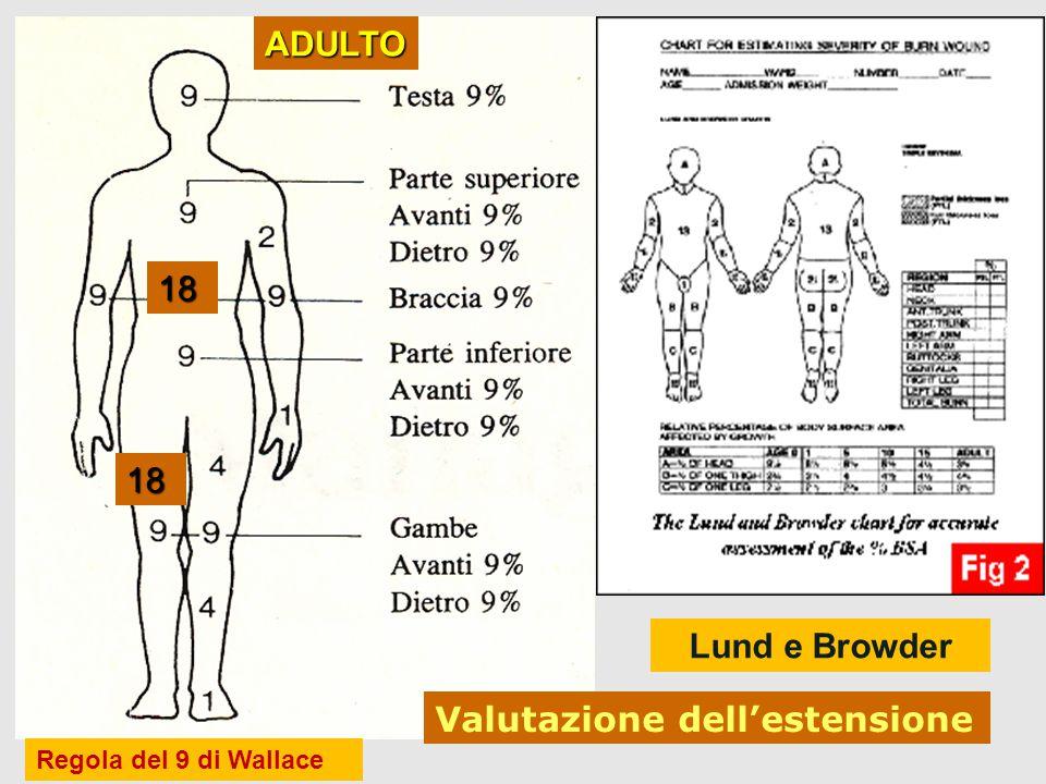 9 18 Valutazione dell'estensione 18 18 ADULTO Lund e Browder Regola del 9 di Wallace