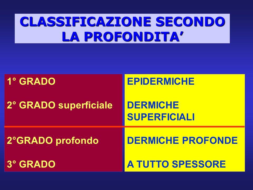 CLASSIFICAZIONE SECONDO LA PROFONDITA' 1° GRADO 2° GRADO superficiale 2°GRADO profondo 3° GRADO EPIDERMICHE DERMICHE SUPERFICIALI DERMICHE PROFONDE A
