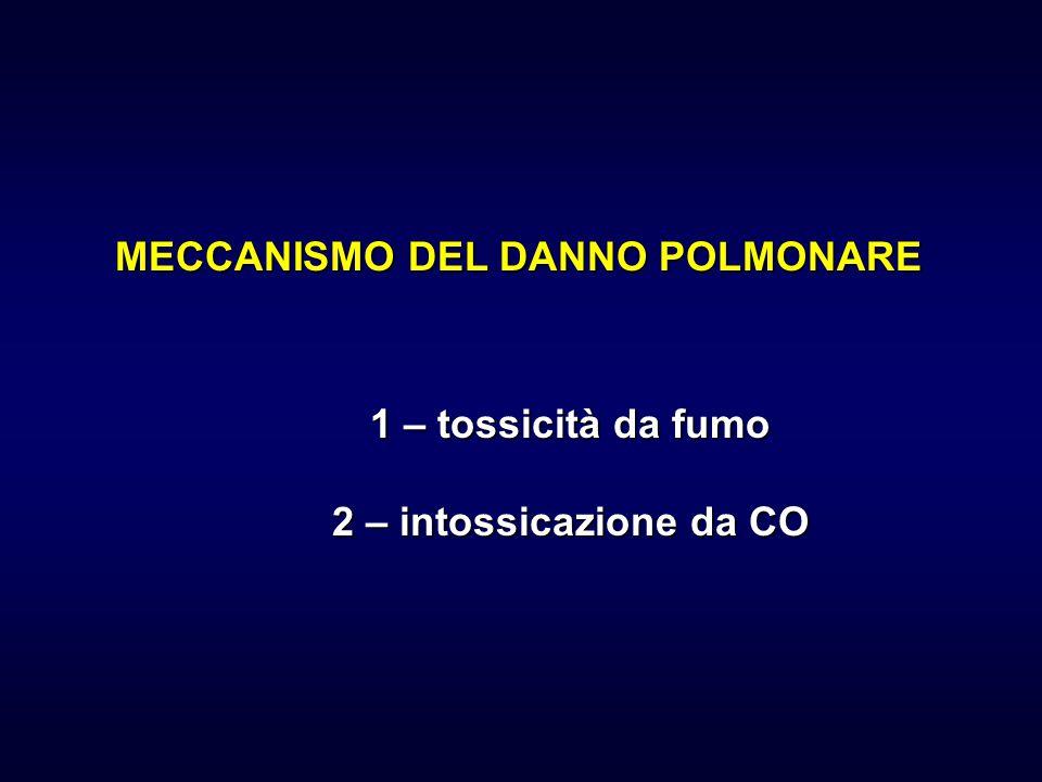 MECCANISMO DEL DANNO POLMONARE 1 – tossicità da fumo 2 – intossicazione da CO