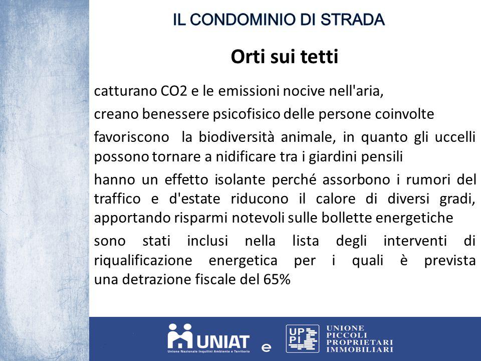 Orti sui tetti catturano CO2 e le emissioni nocive nell'aria, creano benessere psicofisico delle persone coinvolte favoriscono la biodiversità animale