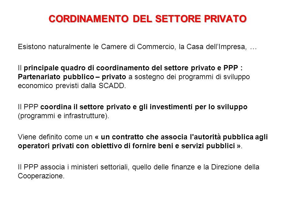 CORDINAMENTO DEL SETTORE PRIVATO Esistono naturalmente le Camere di Commercio, la Casa dell'Impresa, … Il principale quadro di coordinamento del setto