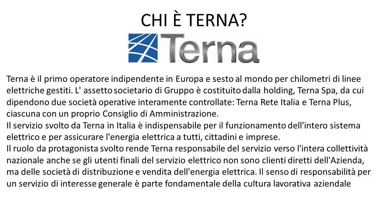 Terna è il primo operatore indipendente in Europa e sesto al mondo per chilometri di linee elettriche gestiti. L' assetto societario di Gruppo è costi