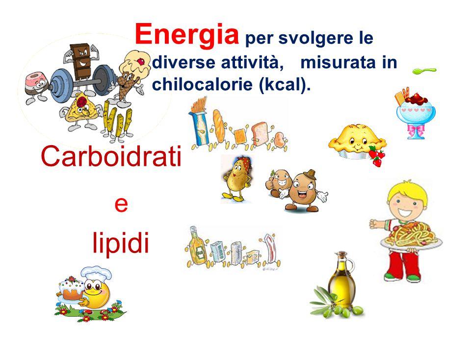 Abbiamo capito che per andare a scuola, per studiare, … per crescere, abbiamo bisogno di tutti questi principi nutritivi, infatti forniscono all'organ