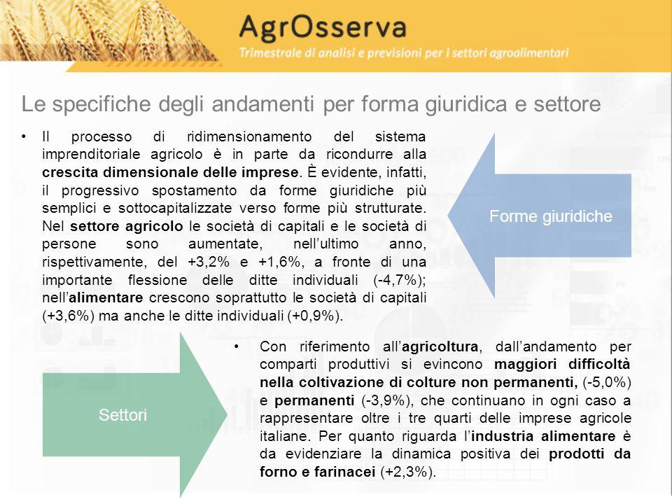 Le specifiche degli andamenti per forma giuridica e settore Il processo di ridimensionamento del sistema imprenditoriale agricolo è in parte da ricondurre alla crescita dimensionale delle imprese.