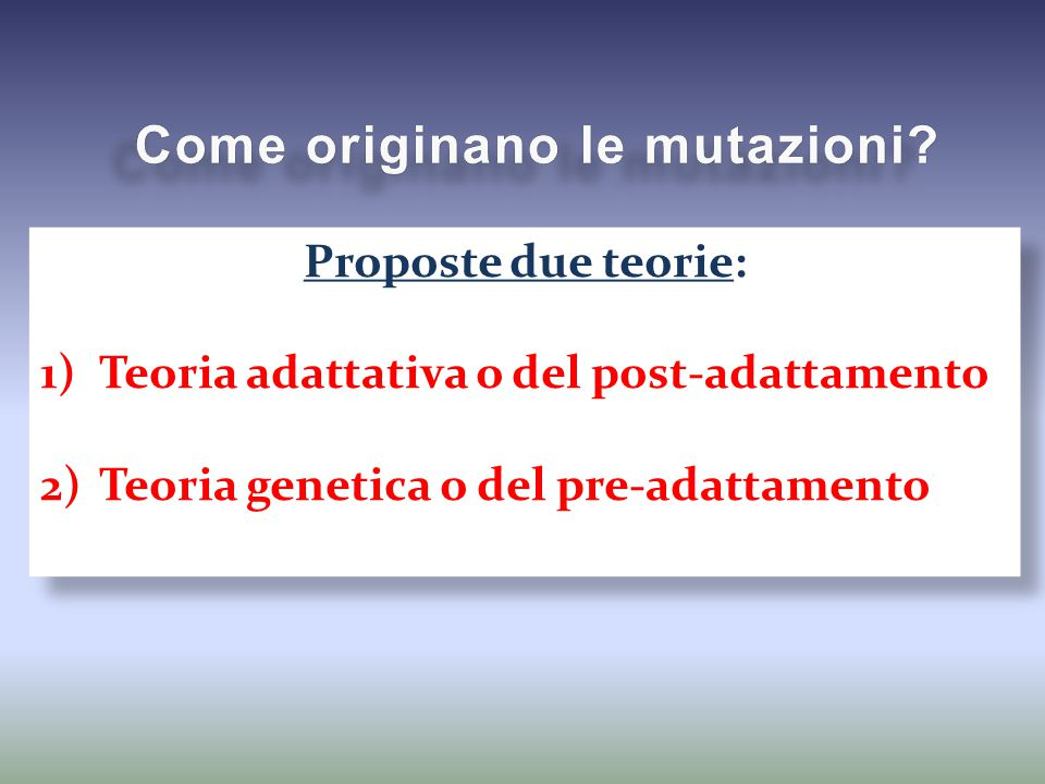 Sono cambiamenti della sequenza nucleotidica del DNA che coinvolgono una o poche basi azotate.