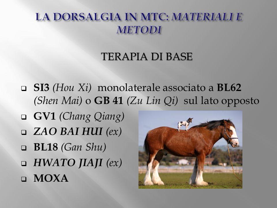 TERAPIA DI BASE  SI3 (Hou Xi) monolaterale associato a BL62 (Shen Mai) o GB 41 (Zu Lin Qi) sul lato opposto  GV1 (Chang Qiang)  ZAO BAI HUI (ex) 