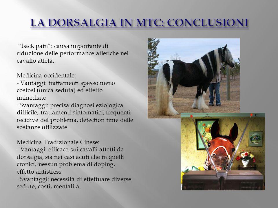 """""""back pain"""": causa importante di riduzione delle performance atletiche nel cavallo atleta. Medicina occidentale: - Vantaggi: trattamenti spesso meno c"""
