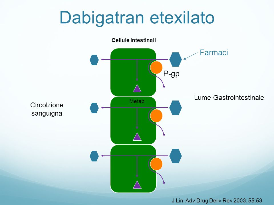 Cellule intestinali Farmaci P-gp Lume Gastrointestinale Circolzione sanguigna Metab Dabigatran etexilato J Lin Adv Drug Deliv Rev 2003; 55:53