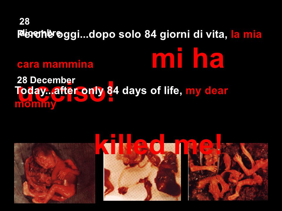 28 dicembre Perchè oggi...dopo solo 84 giorni di vita, la mia cara mammina mi ha ucciso! Today...after only 84 days of life, my dear mommy killed me!