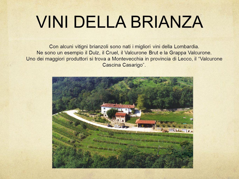 VINI DELLA BRIANZA Con alcuni vitigni brianzoli sono nati i migliori vini della Lombardia.