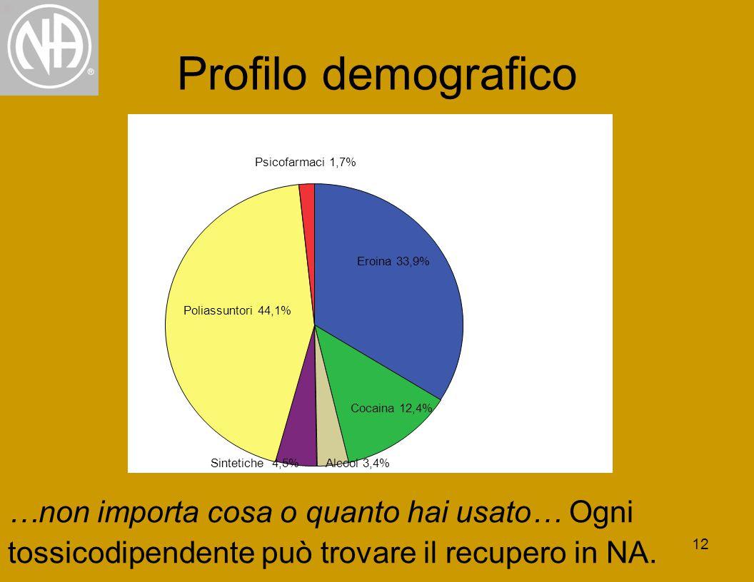 12 Profilo demografico …non importa cosa o quanto hai usato… Ogni tossicodipendente può trovare il recupero in NA.