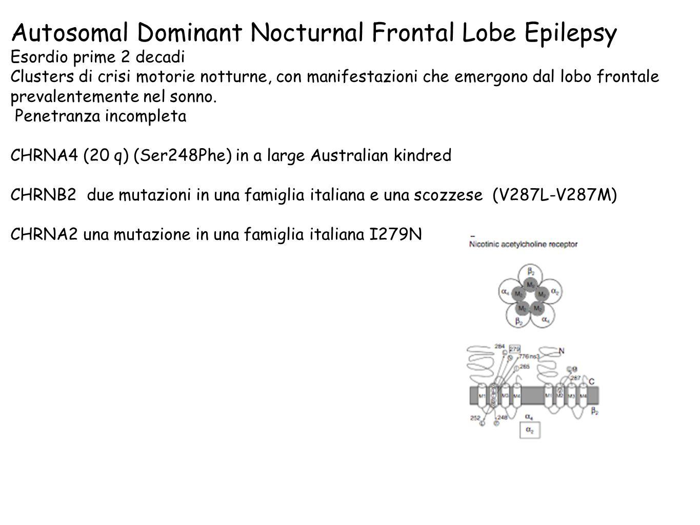 Autosomal Dominant Nocturnal Frontal Lobe Epilepsy Esordio prime 2 decadi Clusters di crisi motorie notturne, con manifestazioni che emergono dal lobo frontale prevalentemente nel sonno.