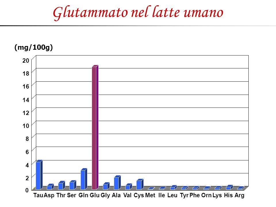 Glutammato nel latte umano 0 2 4 6 8 10 12 14 16 18 20 TauAspThrSerGlnGluGlyAlaValCysMetIleLeuTyrPheOrnLysHisArg (mg/100g)