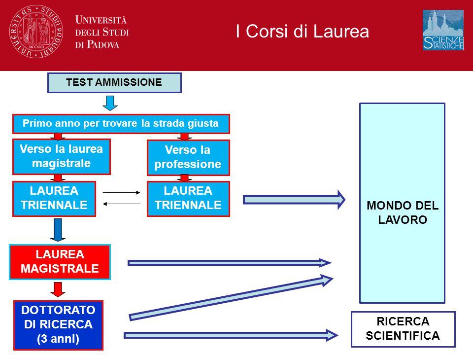 I Corsi di Laurea TEST AMMISSIONE Verso la professione LAUREA MAGISTRALE DOTTORATO DI RICERCA (3 anni) RICERCA SCIENTIFICA MONDO DEL LAVORO Primo anno