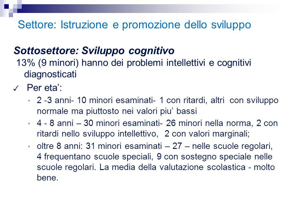 Settore: Istruzione e promozione dello sviluppo Sottosettore: Sviluppo cognitivo 13% (9 minori) hanno dei problemi intellettivi e cognitivi diagnostic