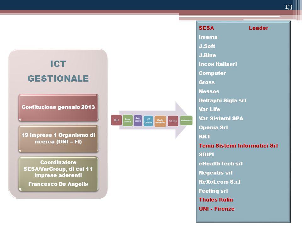 13 ICT GESTIONALE Costituzione gennaio 2013 19 imprese 1 Organismo di ricerca (UNI – FI) Coordinatore SESA/VarGroup, di cui 11 imprese aderenti France