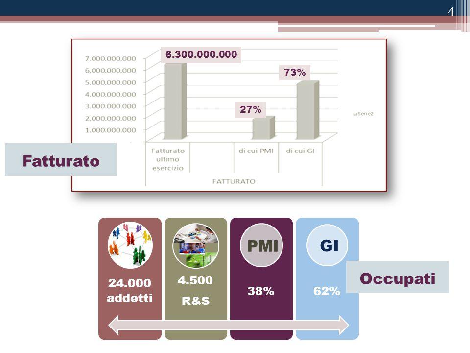 4 24.000 addetti 4.500 R&S 38%62% 6.300.000.000 73% 27% PMI GI Fatturato Occupati