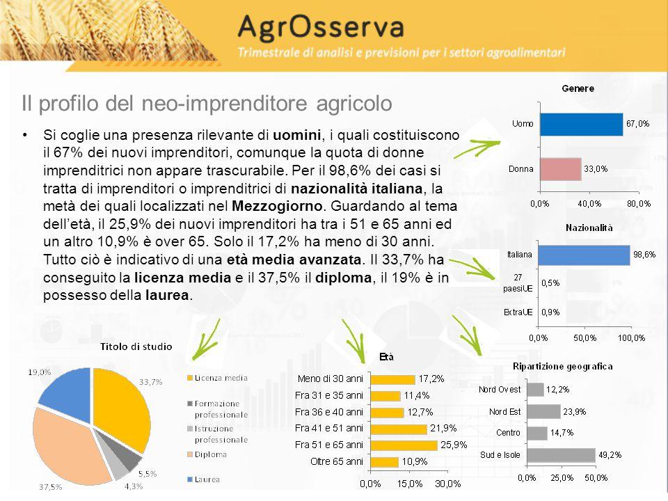 Il profilo del neo-imprenditore agricolo Si coglie una presenza rilevante di uomini, i quali costituiscono il 67% dei nuovi imprenditori, comunque la quota di donne imprenditrici non appare trascurabile.