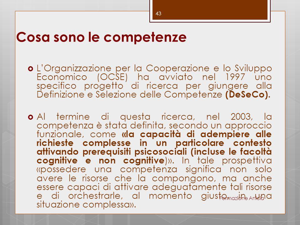 Cosa sono le competenze  L'Organizzazione per la Cooperazione e lo Sviluppo Economico (OCSE) ha avviato nel 1997 uno specifico progetto di ricerca pe