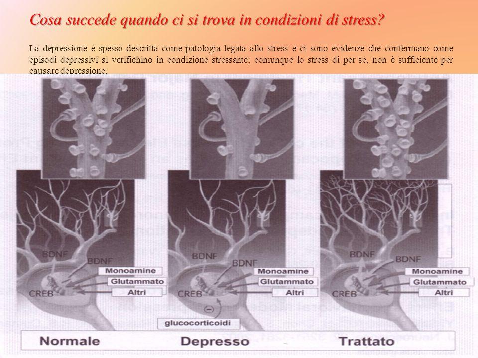 Cosa succede quando ci si trova in condizioni di stress.
