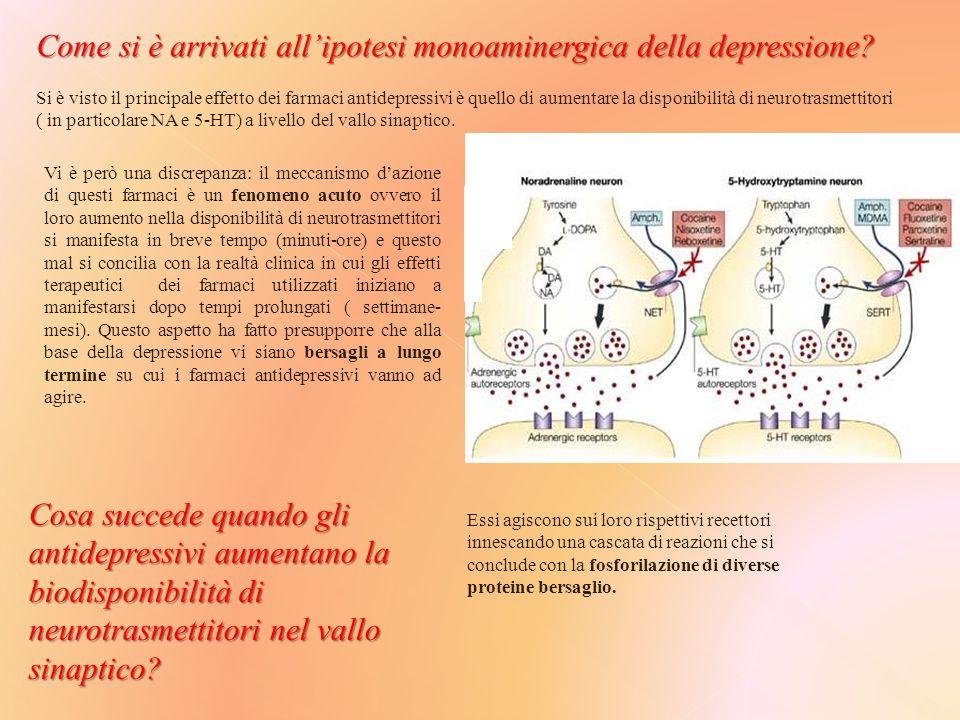 Come si è arrivati all'ipotesi monoaminergica della depressione.