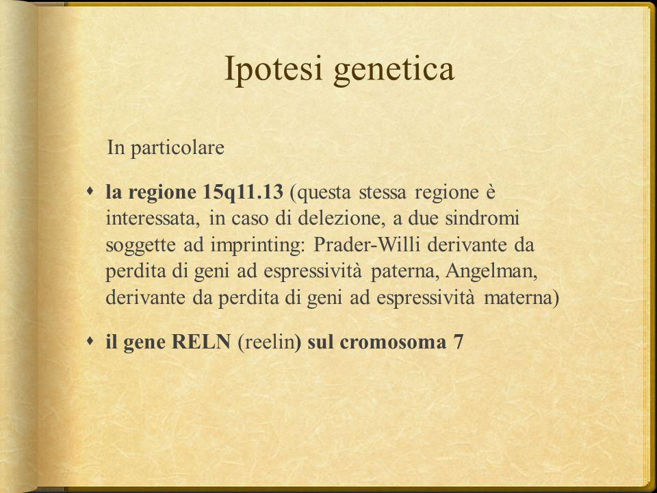 Ipotesi genetica In particolare  la regione 15q11.13 (questa stessa regione è interessata, in caso di delezione, a due sindromi soggette ad imprintin