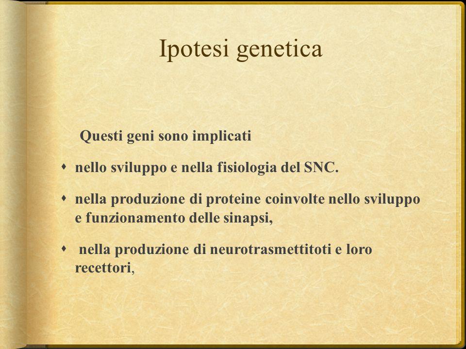 Ipotesi genetica Questi geni sono implicati  nello sviluppo e nella fisiologia del SNC.  nella produzione di proteine coinvolte nello sviluppo e fun