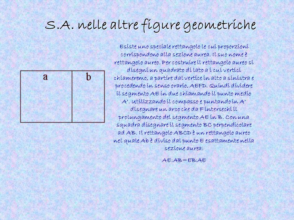 S.A. nelle altre figure geometriche Esiste uno speciale rettangolo le cui proporzioni corrispondono alla sezione aurea. Il suo nome è rettangolo aureo