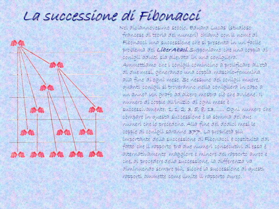 La successione di Fibonacci Nel diciannovesimo secolo, Eduard Lucas (studioso francese di teoria dei numeri) chiamò con il nome di Fibonacci una succe