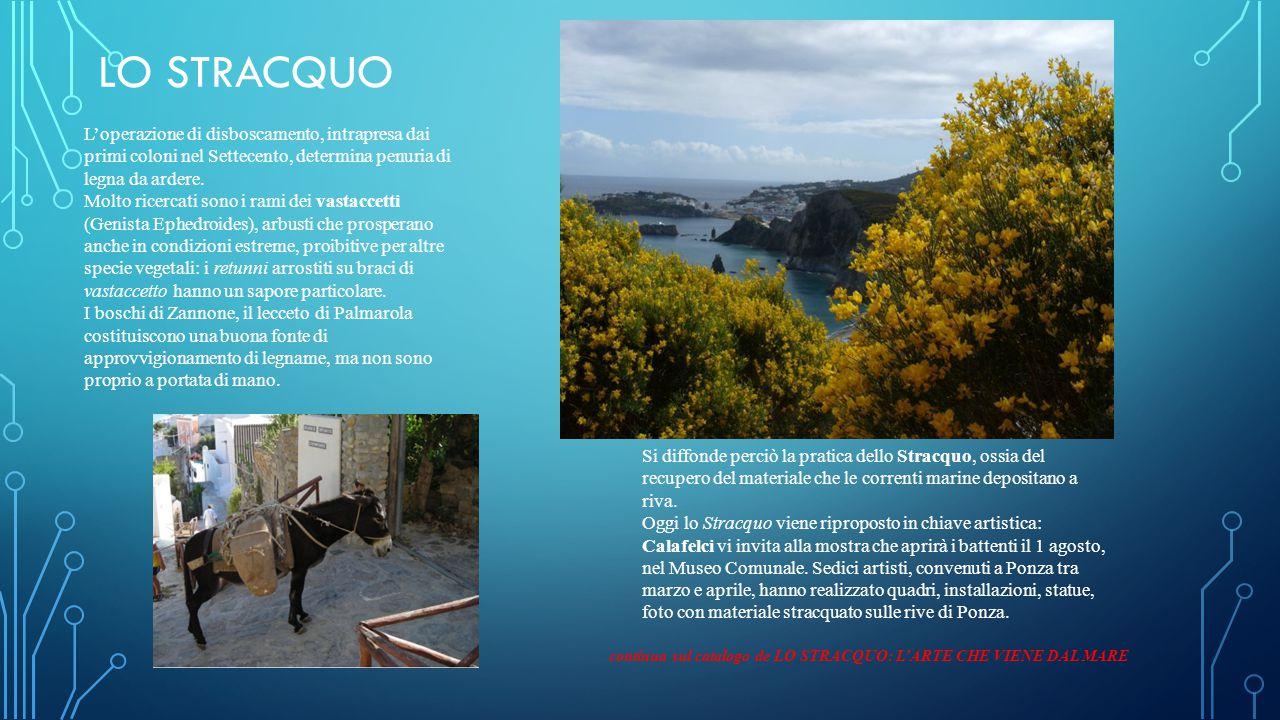 LO STRACQUO Si diffonde perciò la pratica dello Stracquo, ossia del recupero del materiale che le correnti marine depositano a riva.