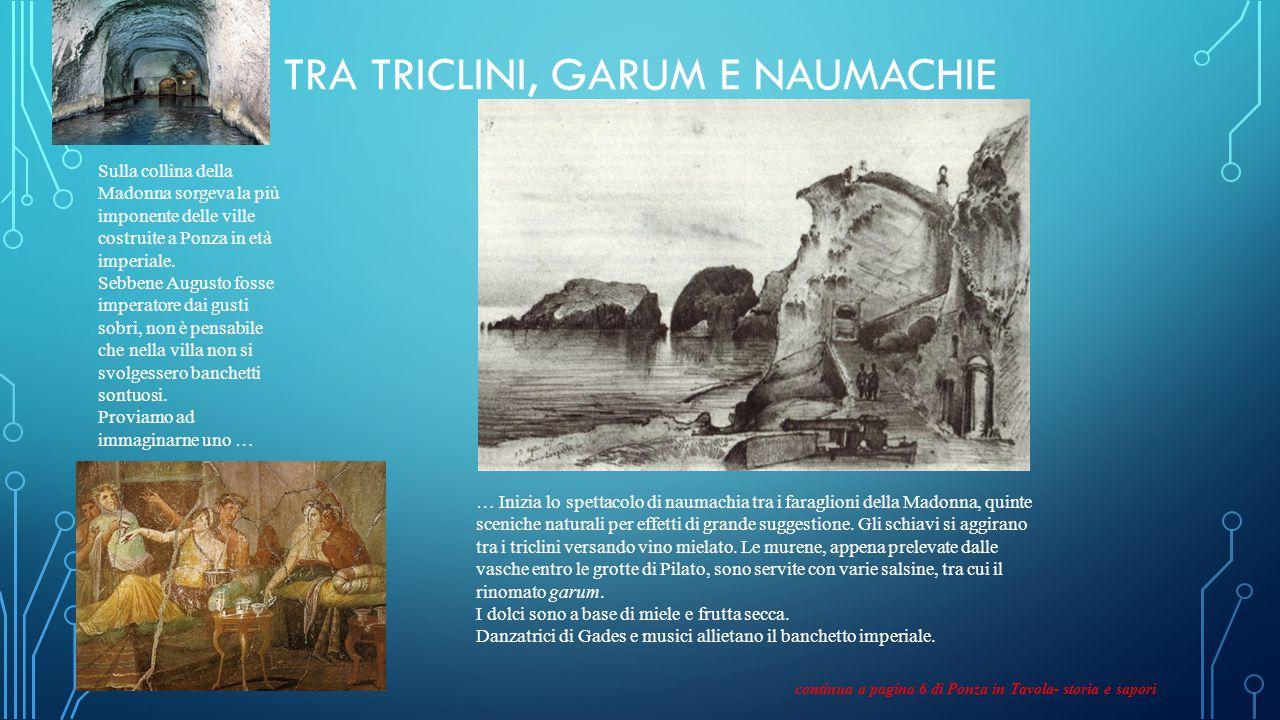 TRA TRICLINI, GARUM E NAUMACHIE Sulla collina della Madonna sorgeva la più imponente delle ville costruite a Ponza in età imperiale.