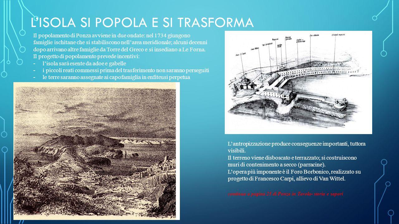 L'ISOLA SI POPOLA E SI TRASFORMA Il popolamento di Ponza avviene in due ondate: nel 1734 giungono famiglie ischitane che si stabiliscono nell'area meridionale; alcuni decenni dopo arrivano altre famiglie da Torre del Greco e si insediano a Le Forna.