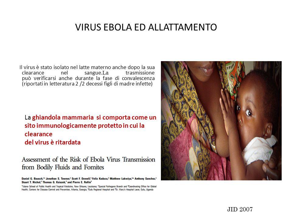VIRUS EBOLA ED ALLATTAMENTO Il virus è stato isolato nel latte materno anche dopo la sua clearance nel sangue.