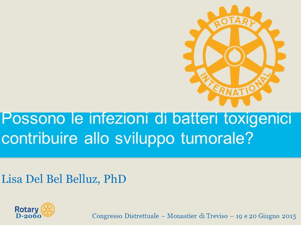 Possono le infezioni di batteri toxigenici contribuire allo sviluppo tumorale? Lisa Del Bel Belluz, PhD D-2060Congresso Distrettuale – Monastier di Tr