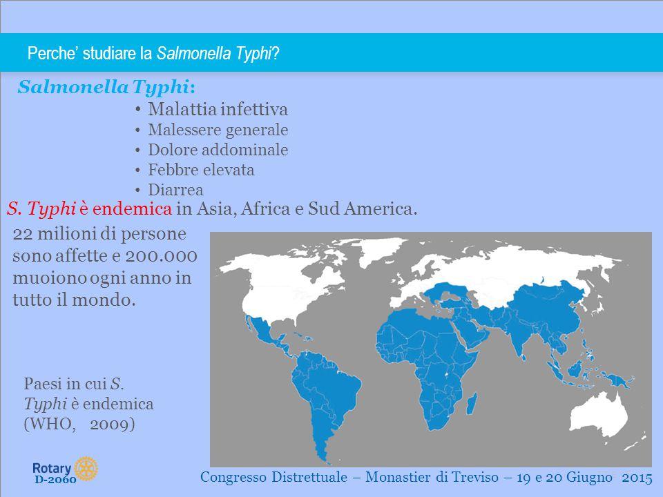 TITLE | 5 Perche' studiare la Salmonella Typhi ? D-2060 Congresso Distrettuale – Monastier di Treviso – 19 e 20 Giugno 2015 Salmonella Typhi: Malattia