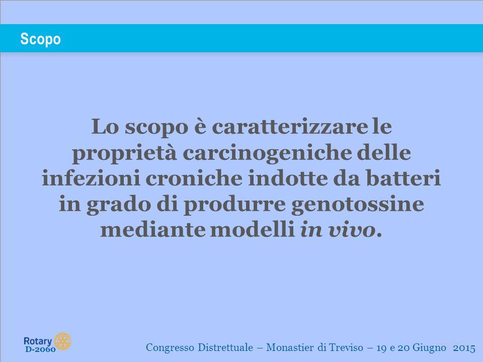 TITLE | 7 Scopo D-2060 Congresso Distrettuale – Monastier di Treviso – 19 e 20 Giugno 2015 Lo scopo è caratterizzare le proprietà carcinogeniche delle