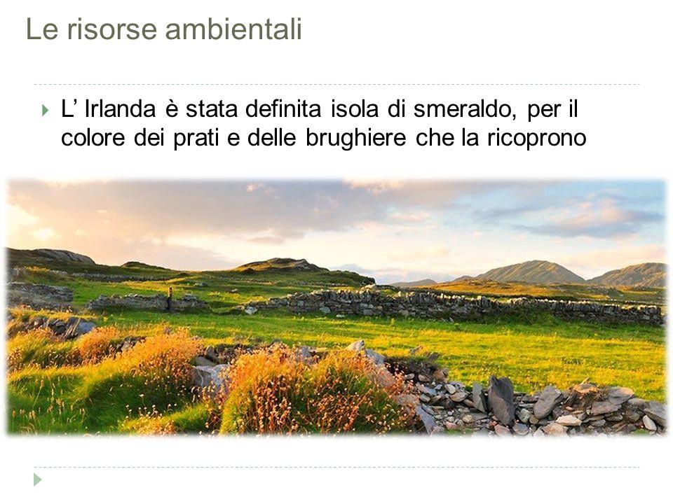 Le risorse ambientali  L' Irlanda è stata definita isola di smeraldo, per il colore dei prati e delle brughiere che la ricoprono