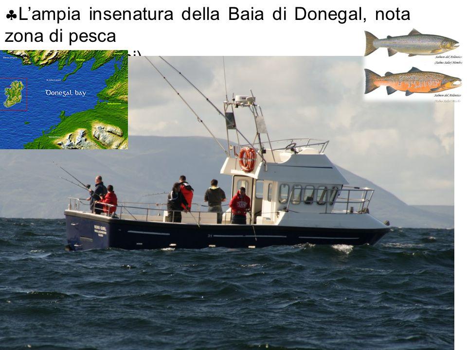  L'ampia insenatura della Baia di Donegal, nota zona di pesca ( tonni e salmoni)