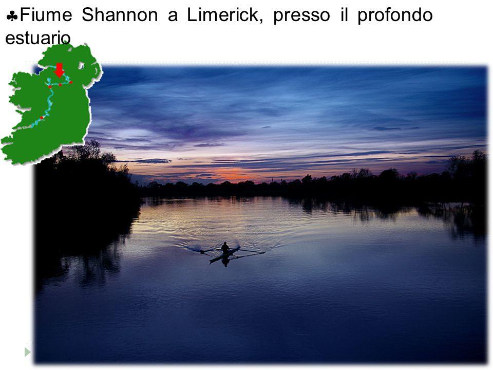  Fiume Shannon a Limerick, presso il profondo estuario