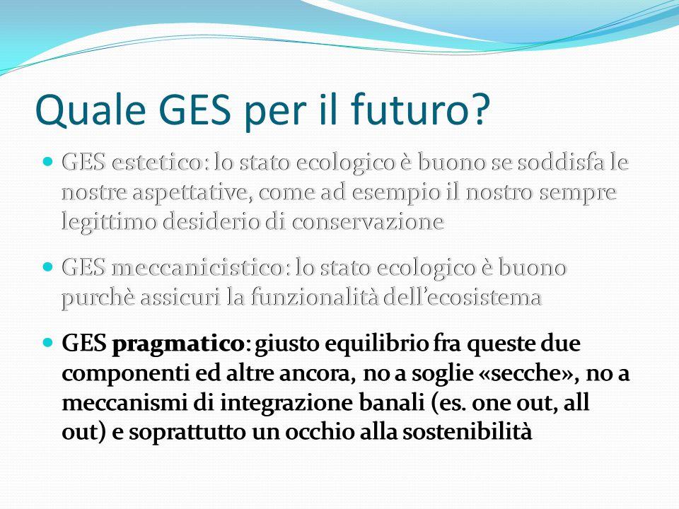 Quale GES per il futuro? GES estetico: lo stato ecologico è buono se soddisfa le nostre aspettative, come ad esempio il nostro sempre legittimo deside