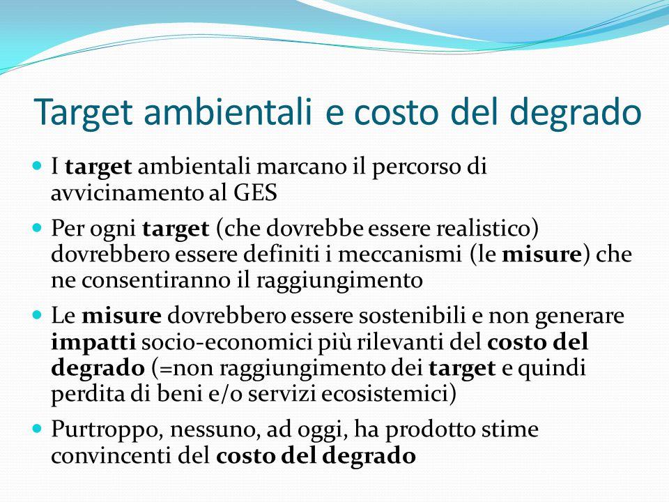 Target ambientali e costo del degrado I target ambientali marcano il percorso di avvicinamento al GES Per ogni target (che dovrebbe essere realistico)