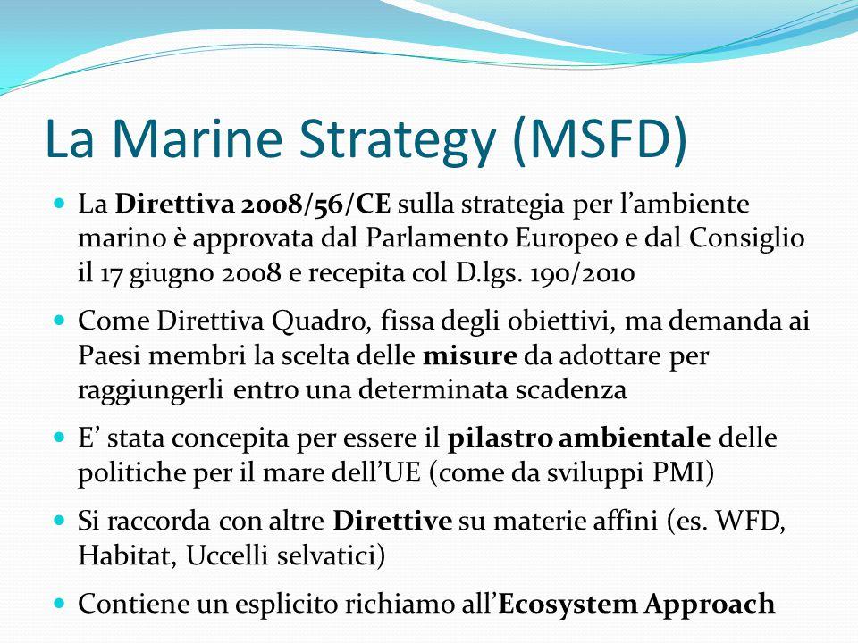 La Marine Strategy (MSFD) La Direttiva 2008/56/CE sulla strategia per l'ambiente marino è approvata dal Parlamento Europeo e dal Consiglio il 17 giugn