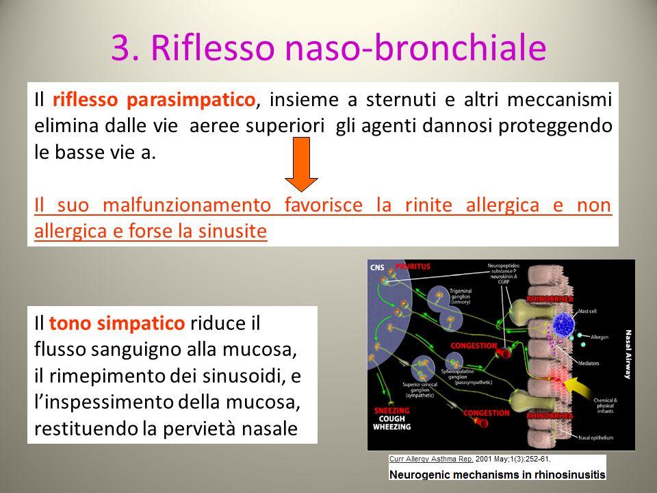 3. Riflesso naso-bronchiale Il riflesso parasimpatico, insieme a sternuti e altri meccanismi elimina dalle vie aeree superiori gli agenti dannosi prot