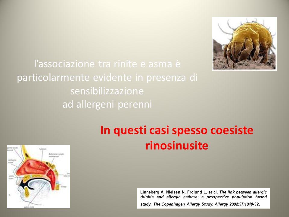 l'associazione tra rinite e asma è particolarmente evidente in presenza di sensibilizzazione ad allergeni perenni In questi casi spesso coesiste rinos