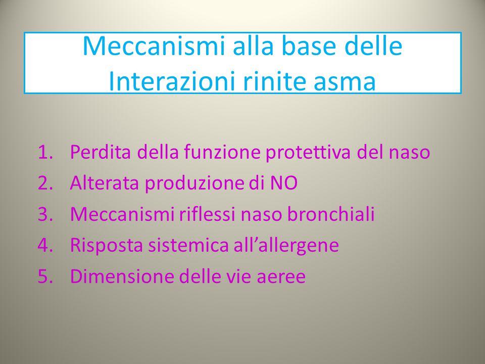 Meccanismi alla base delle Interazioni rinite asma 1.Perdita della funzione protettiva del naso 2.Alterata produzione di NO 3.Meccanismi riflessi naso