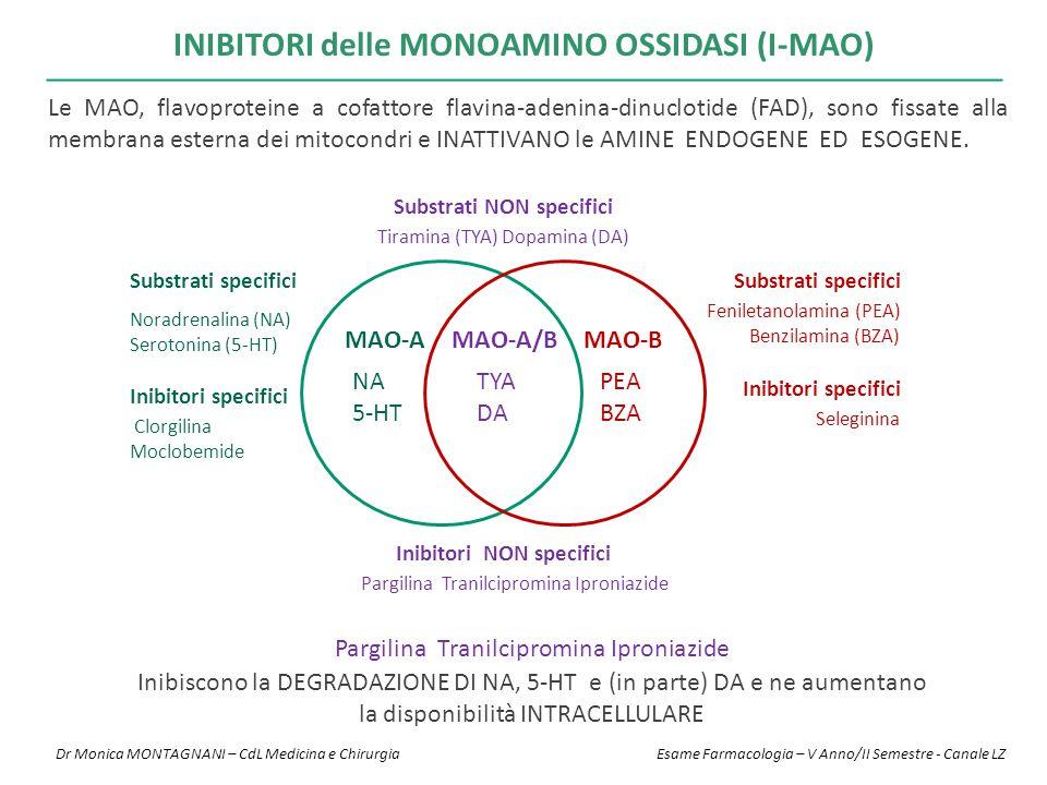 INIBITORI delle MONOAMINO OSSIDASI (I-MAO) Pargilina Tranilcipromina Iproniazide Inibiscono la DEGRADAZIONE DI NA, 5-HT e (in parte) DA e ne aumentano la disponibilità INTRACELLULARE MAO-A MAO-A/BMAO-B NA 5-HT TYA DA PEA BZA Substrati specifici Substrati NON specifici Substrati specifici Inibitori specifici Clorgilina Moclobemide Seleginina Pargilina Tranilcipromina Iproniazide Inibitori specifici Inibitori NON specifici Feniletanolamina (PEA) Benzilamina (BZA) Tiramina (TYA) Dopamina (DA) Noradrenalina (NA) Serotonina (5-HT) Le MAO, flavoproteine a cofattore flavina-adenina-dinuclotide (FAD), sono fissate alla membrana esterna dei mitocondri e INATTIVANO le AMINE ENDOGENE ED ESOGENE.