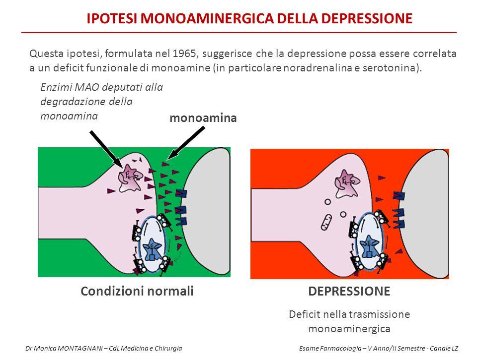 IPOTESI MONOAMINERGICA DELLA DEPRESSIONE Enzimi MAO deputati alla degradazione della monoamina monoamina Condizioni normaliDEPRESSIONE Deficit nella trasmissione monoaminergica Questa ipotesi, formulata nel 1965, suggerisce che la depressione possa essere correlata a un deficit funzionale di monoamine (in particolare noradrenalina e serotonina).