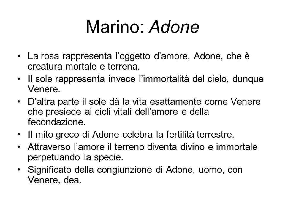 Marino: Adone La rosa rappresenta l'oggetto d'amore, Adone, che è creatura mortale e terrena. Il sole rappresenta invece l'immortalità del cielo, dunq