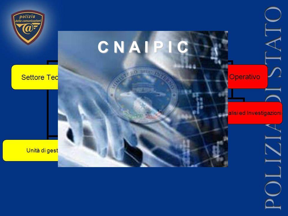 CNAIPIC Settore Tecnico Unità di gestione Unità progetti, sviluppo e formazione Settore Operativo Sala Operativa Unità Intelligence Unità Analisi ed I